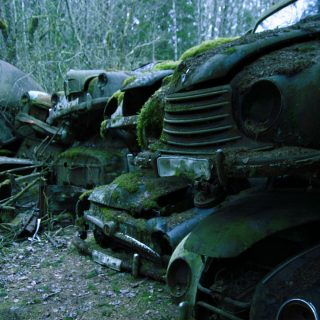 Nature Reclaiming Remote Swedish Junkyard and Bygone Cars