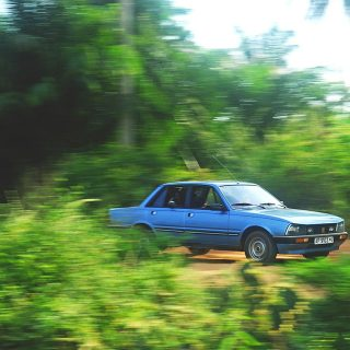 Where Forty-Year Old Peugeots Are Still Hot Stuff