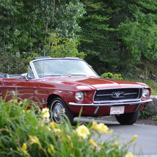 The Joy Of A Canadian '67 Ford Mustang Time Capsule
