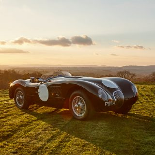 In The Clearing Stands A Jaguar C-Type