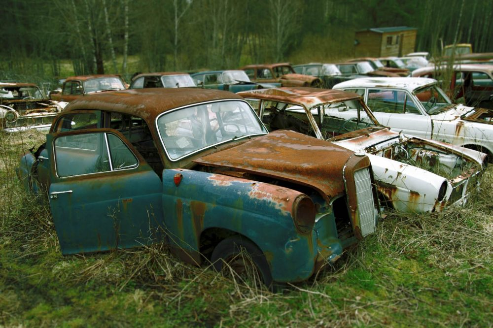Nature Reclaiming Remote Swedish Junkyard and Bygone Cars • Petrolicious