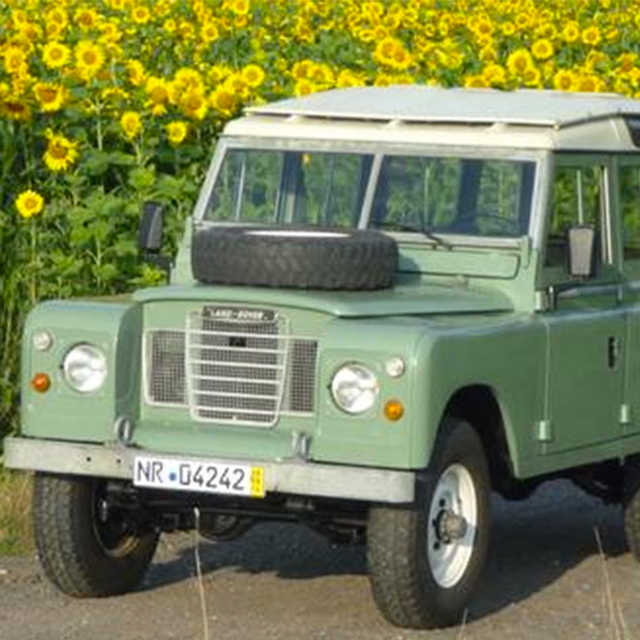 This Green Rover Wants to Come Over