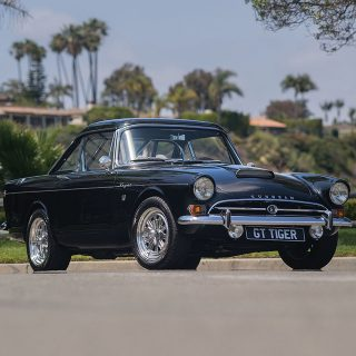 How To Pick Out A Great Sunbeam Tiger