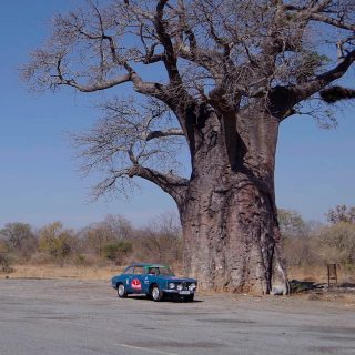 Zimbabwe Was No Match For This Alfa Romeo Sprint GT