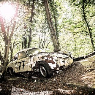 GALLERY: A Forest Full Of Rotting Classics Is Eerily Beautiful