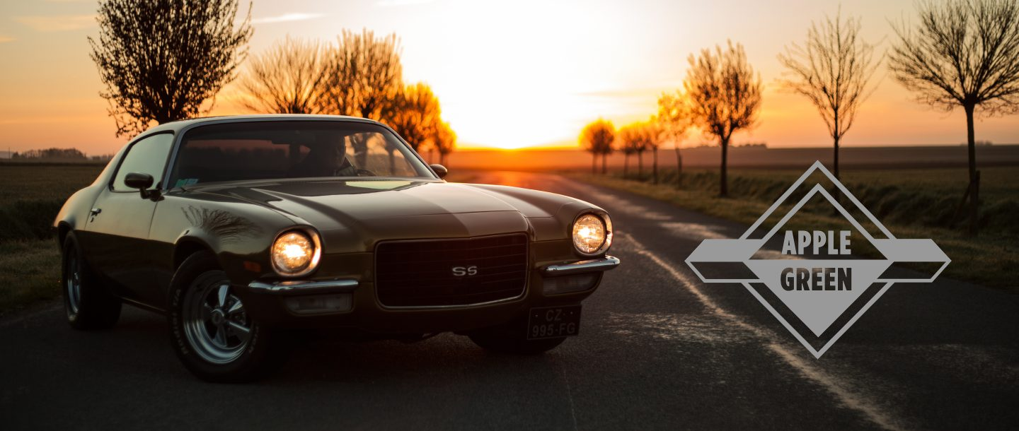 1973 Chevrolet Camaro: An American Let Free In The French Countryside