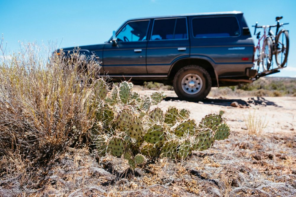 Living Up To The Name: Driving My Toyota Land Cruiser From