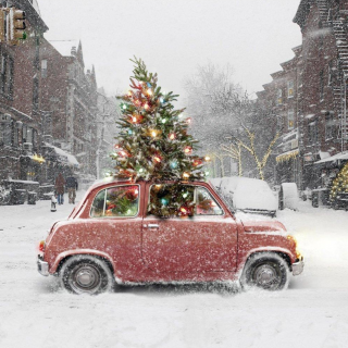 Canoes To Christmas Trees: What Have You Hauled With A Classic Car?