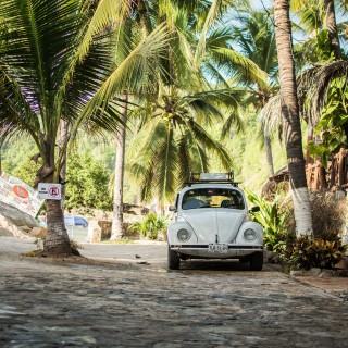 50 Examples Of What It's Like To Go Volkswagen Beetle Spotting In Mexico