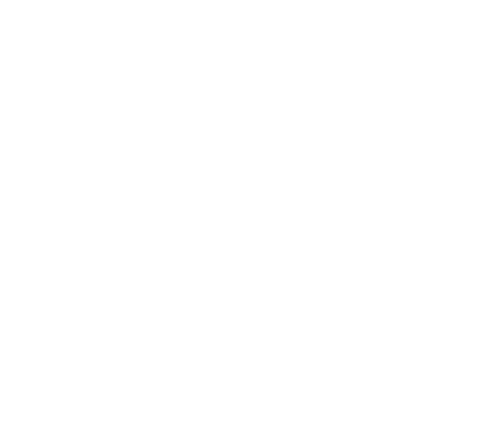 series logo Homologation Specials